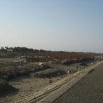 北に向けて名取市閖上浜を望む