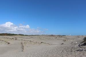 凸凹の砂丘