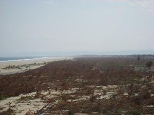 名取市北端より南を望む。2011年5月25日陸上踏査にて