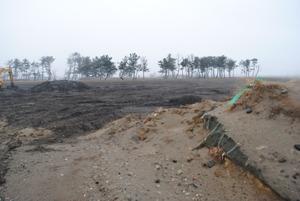 名取市内の瓦礫は市内で存分に使われ、海岸林の基盤盛土の底部にも使用 されている。2014年3月13日