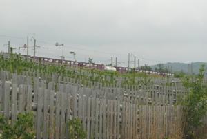 かつては松に守られていたJR羽越本線