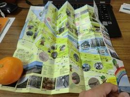特許「ミウラ折り」に関心!