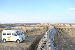 植栽現場と新車両