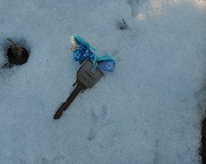 家の鍵より小さい鳥の足あと