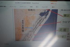 江戸時代の名取の海岸林絵図。 クロマツ林が2列。