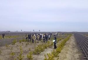 実際に植栽現場を歩きながら 説明を受ける参加者(3月13日歩こうツアー)
