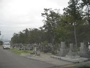 共同墓地が多くの松原とともにあった。松原も地区の共有林なのかもしれない。(海洋町大里松原)