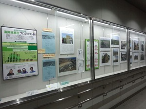 JR名取駅で写真70枚ほど展示。3月1日~30日