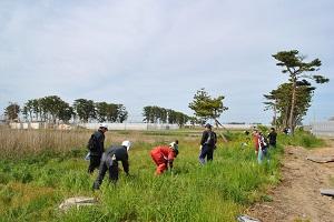 内陸防風林の下刈りをボランティアにお願いするのは初めてで、いろいろご不便おかけしました。