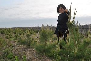 2014年4月末植栽の最大クラス。浅野さんの身長は150cm。