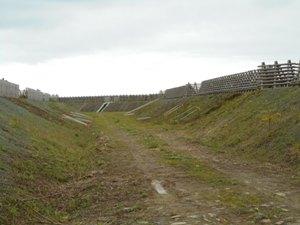 ここは最もひどい場所の一つ。すぐニセアカシア並木になります。