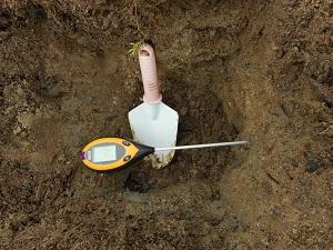 土壌のPh 水分状況をDr,Meterで測る