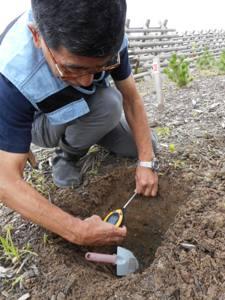 土壌の物理性調査にて(2016年7月15日)