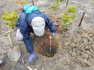 ここは水分を多量に含んだ粘土質の土、40㎝掘るのに一苦労です