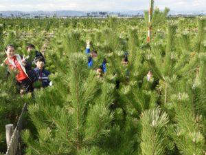 中学生も枝が密集した林内に入って調査