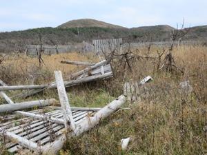 撤去が検討されている他県の防風被害跡地にて