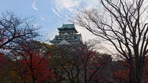 すっかり紅葉の中の大阪城。寒い朝でした