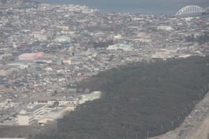 松林がなかった右の地区と松林背後の地区では、死亡率・家屋損壊率など大きな開きが出たと、先日県庁職員も改めて言っておられました