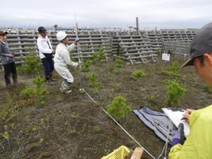 森林総合研究所による土壌硬度調査。フィリピンのアブラ研修センターのデルフィン・テソロ所長は6月上旬の業務を一通りすべて見学。多くの作業も体験した