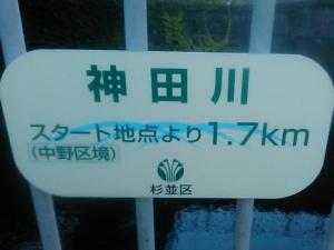 オイスカ本部の横が神田川。これがあるから走りやすい