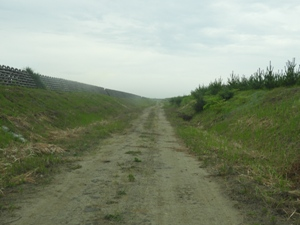 2年に1回の「道刈り」(作業道法面)