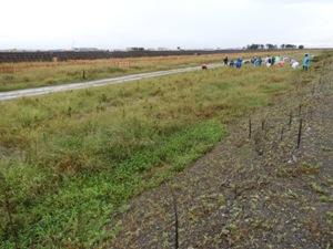 お盆前の姿から急変。マルエツ労組55名に雑草多発地帯20m×700mを再度進んでもらう。撮影:2018年9月10日