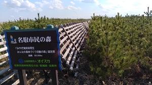名取海岸林02