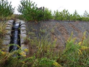 2014年植栽の注目すべき成長の悪い名取3区。大半がこの通り音を立てて流れていた、流れない排水口もいくつかあった。