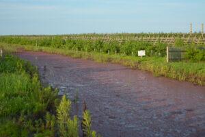 Ps. 赤い排水路