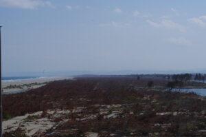 2011年5月25日(津波から2か月後)