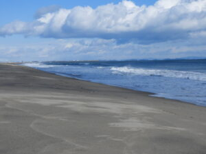 2月18日のライブ中継前。誰一人いない名取の海。風が強く、ほんとに寒かった。風下側の防潮堤の裾が温かく、中継直前はそこで待機してました。